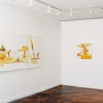 Installation View: Positive Negative Gallery (2014) Vancouver. Photo by Byron Dauncey